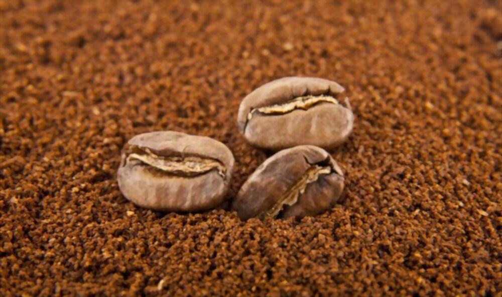 FSSAI for Coffee Powder