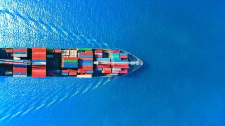 FSSAI for Importers